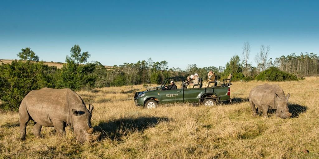 Game Drives at Gondwana: Close encounters with the wild kind