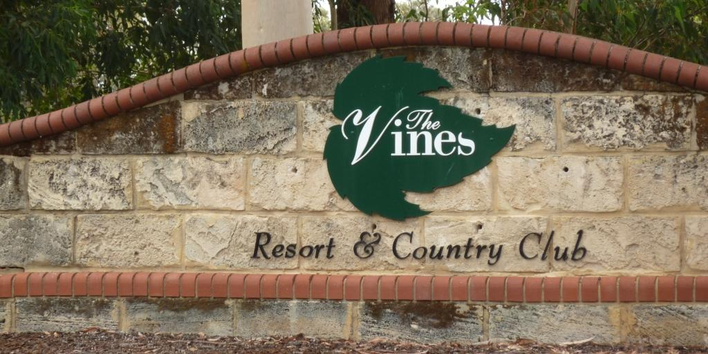 The Vines (Lakes)