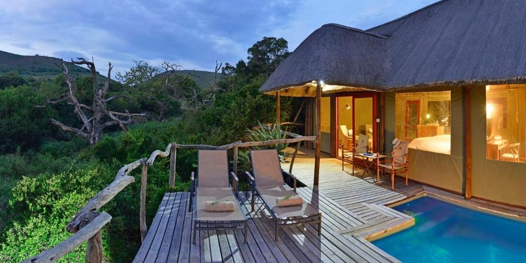 Shamwari: Bayethe Private Pungle Pool